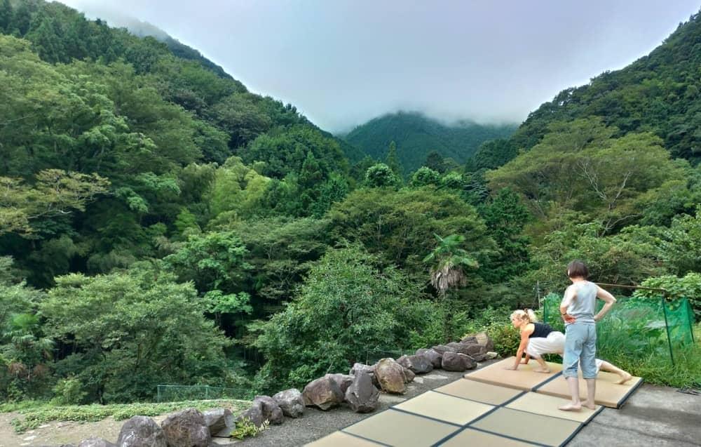 Wellness retreat at 1h30 from tokyo: relax, qi gong, vegetarian organic food, walk, nature healing